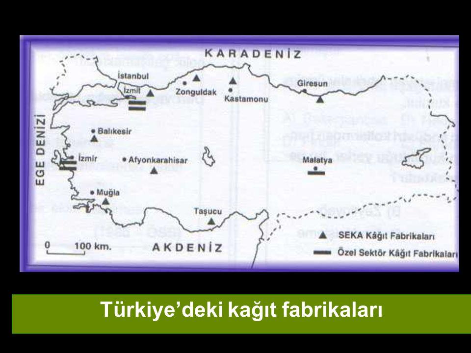Türkiye'deki kağıt fabrikaları