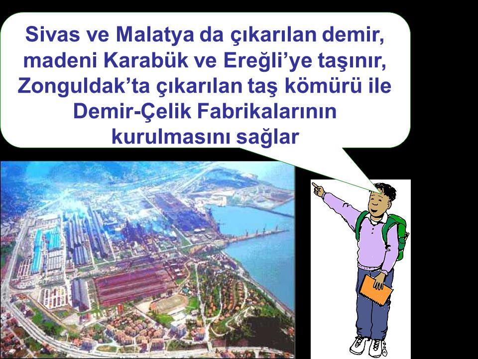 Sivas ve Malatya da çıkarılan demir, madeni Karabük ve Ereğli'ye taşınır, Zonguldak'ta çıkarılan taş kömürü ile Demir-Çelik Fabrikalarının kurulmasını sağlar