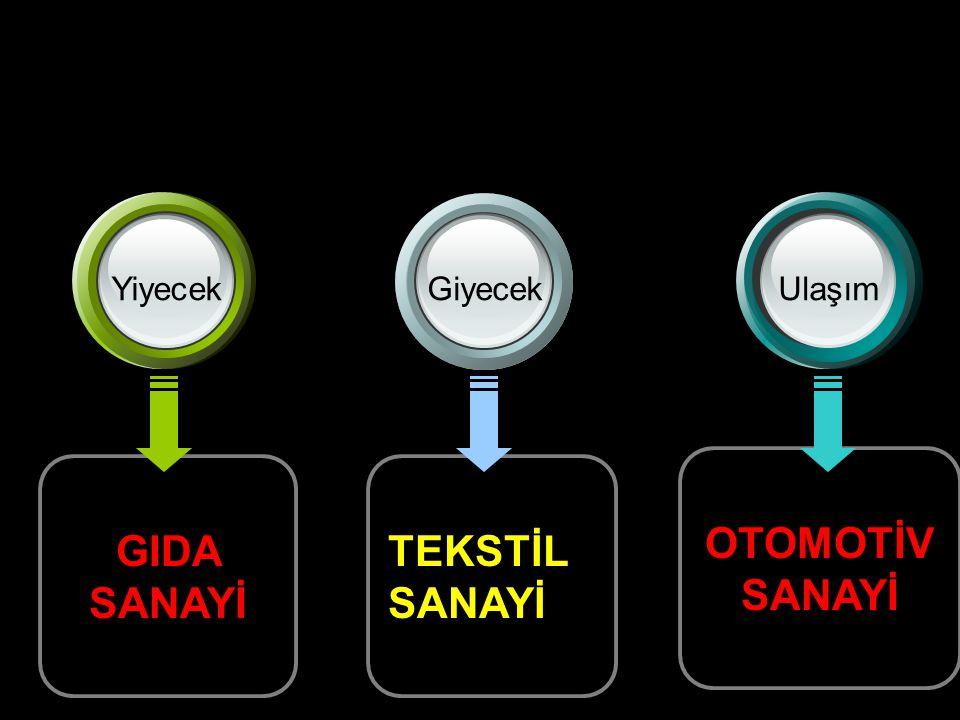 OTOMOTİV SANAYİ GIDA SANAYİ
