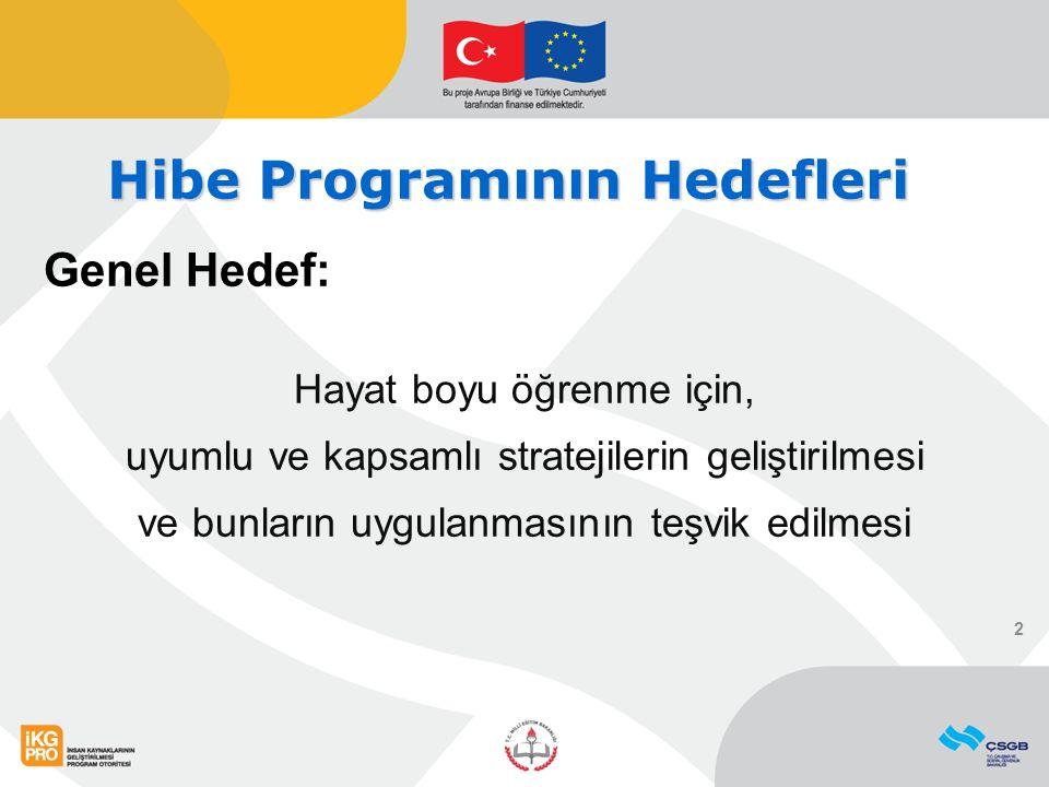 Hibe Programının Hedefleri