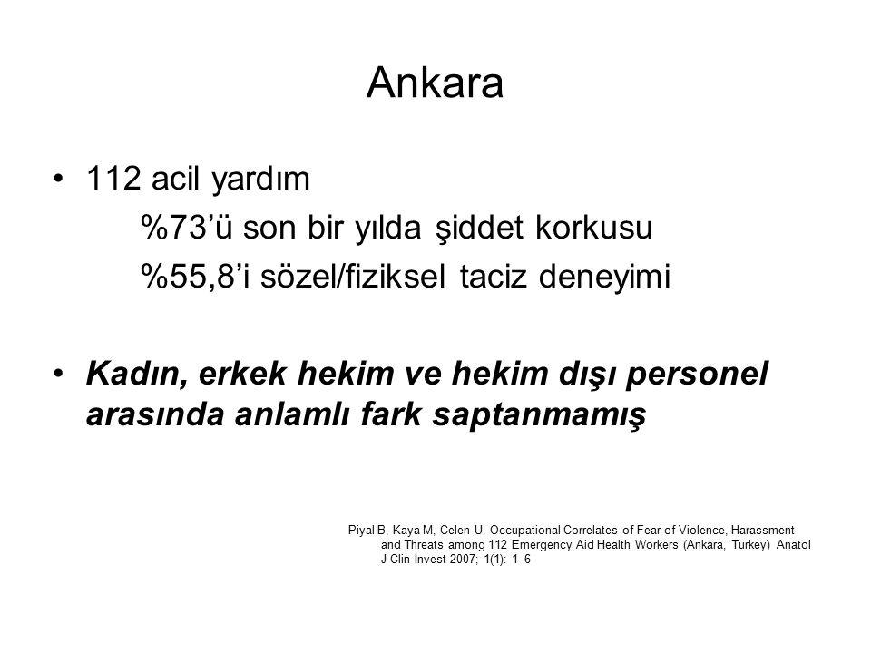 Ankara 112 acil yardım %73'ü son bir yılda şiddet korkusu