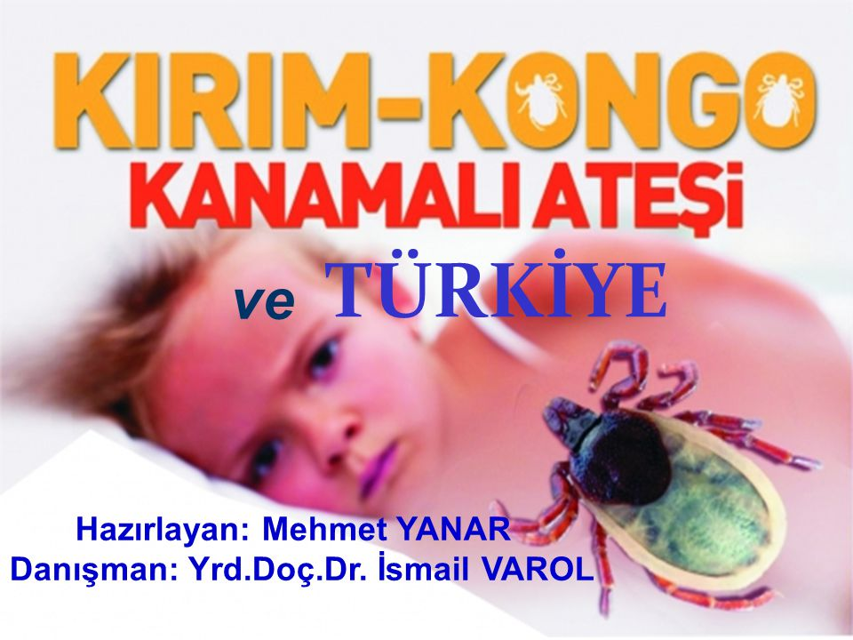 Hazırlayan: Mehmet YANAR Danışman: Yrd.Doç.Dr. İsmail VAROL