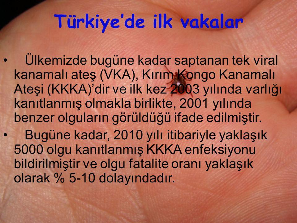 Türkiye'de ilk vakalar
