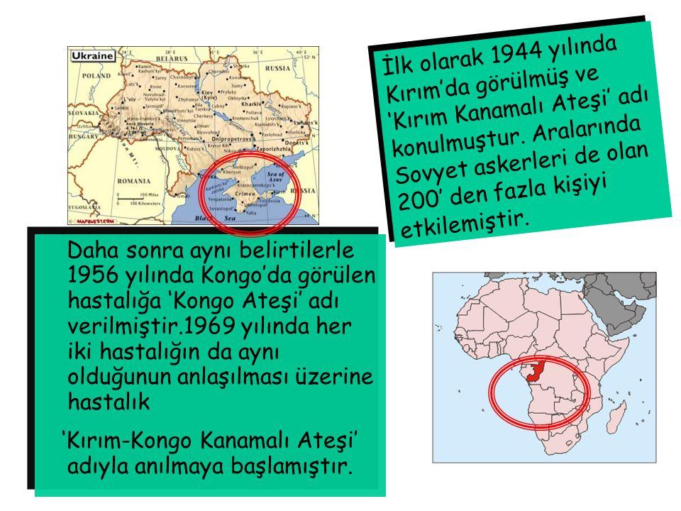 İlk olarak 1944 yılında Kırım'da görülmüş ve