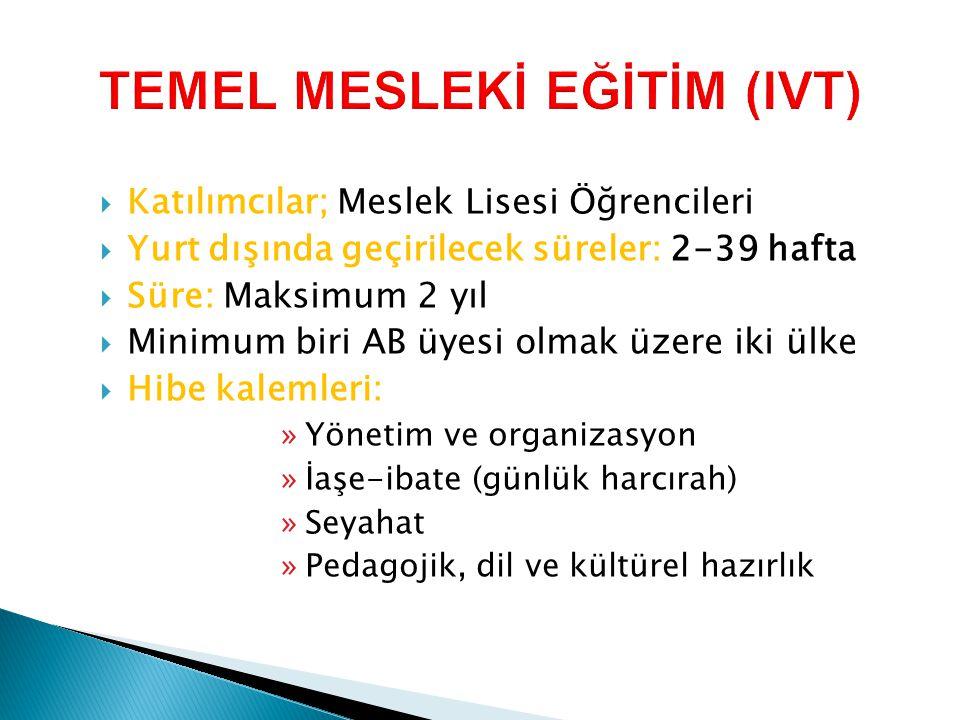 TEMEL MESLEKİ EĞİTİM (IVT)