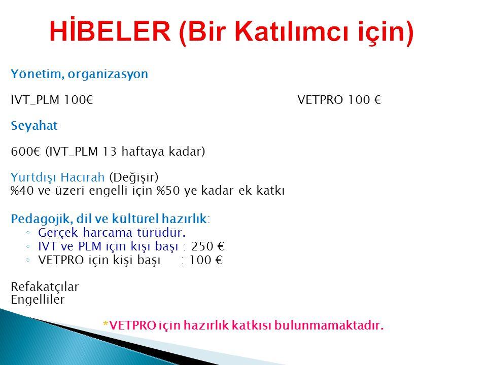 HİBELER (Bir Katılımcı için)