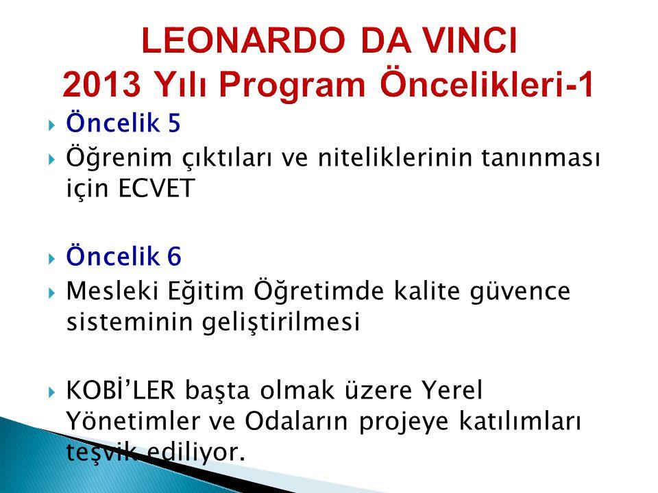 LEONARDO DA VINCI 2013 Yılı Program Öncelikleri-1