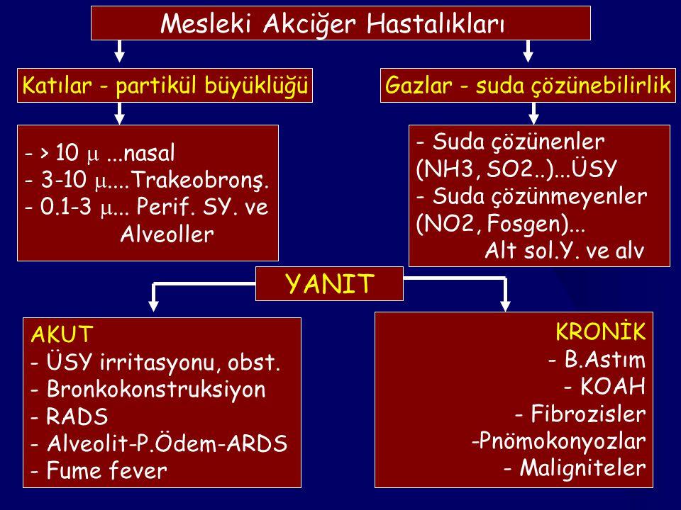Mesleki Akciğer Hastalıkları
