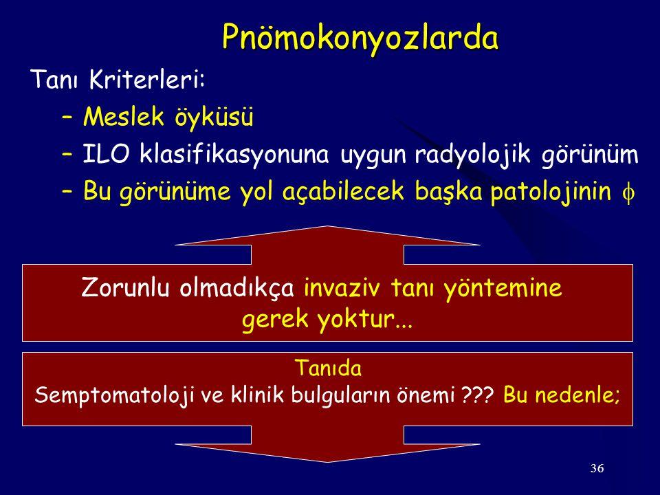 Pnömokonyozlarda Tanı Kriterleri: Meslek öyküsü