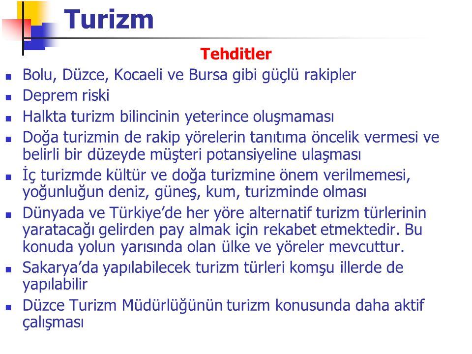 Turizm Tehditler Bolu, Düzce, Kocaeli ve Bursa gibi güçlü rakipler