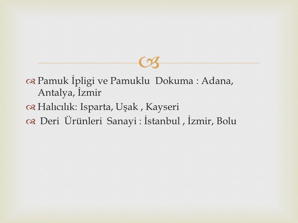 Pamuk İpligi ve Pamuklu Dokuma : Adana, Antalya, İzmir