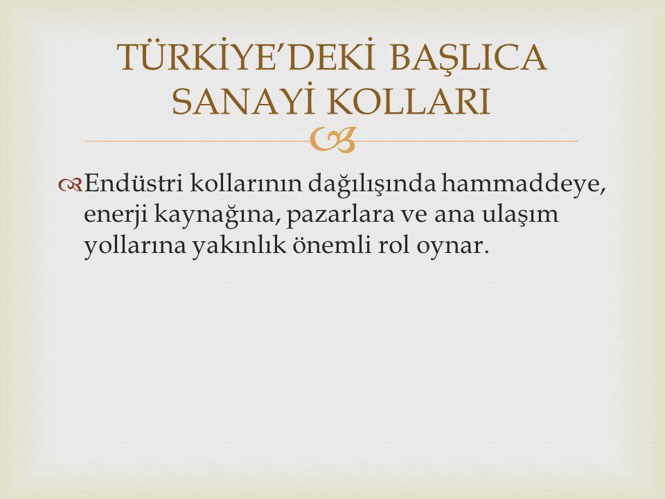 TÜRKİYE'DEKİ BAŞLICA SANAYİ KOLLARI