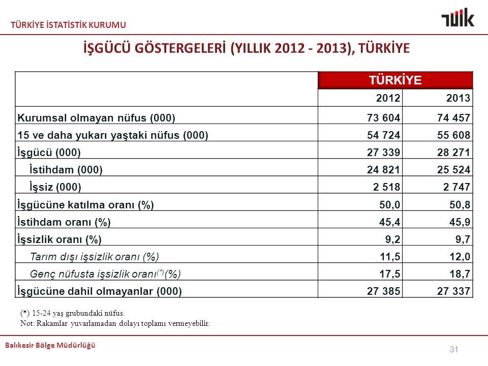 İŞGÜCÜ GÖSTERGELERİ (YILLIK 2012 - 2013), TÜRKİYE