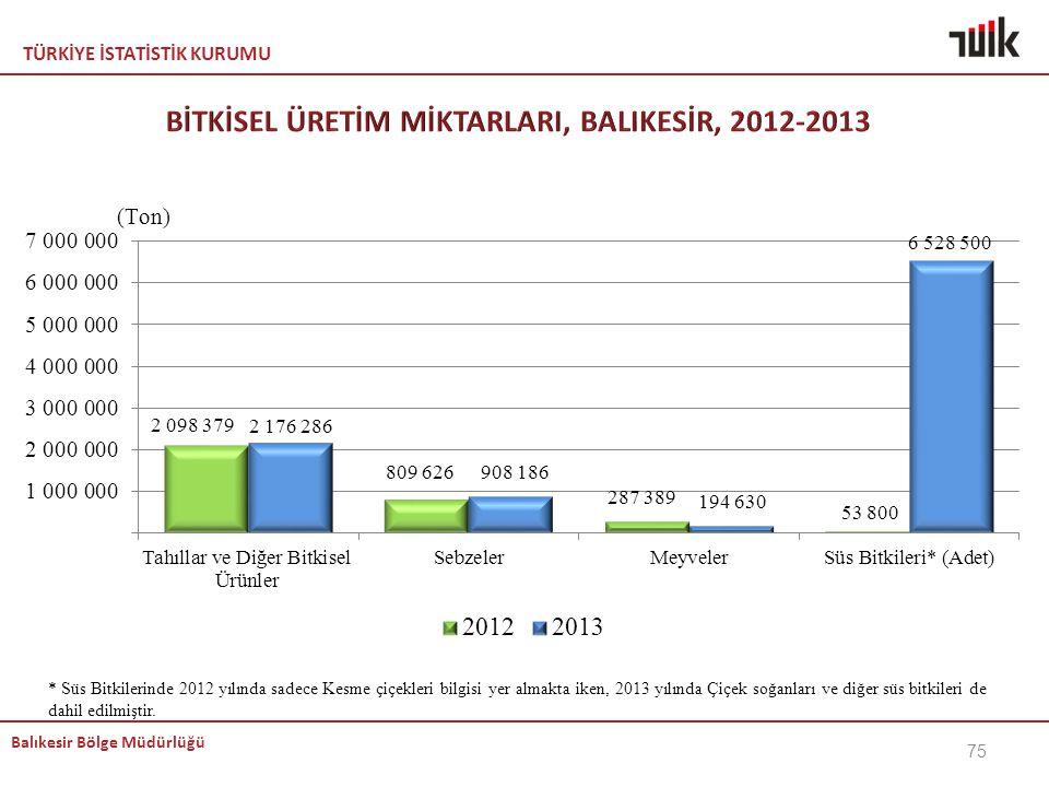 BİTKİSEL ÜRETİM MİKTARLARI, BALIKESİR, 2012-2013