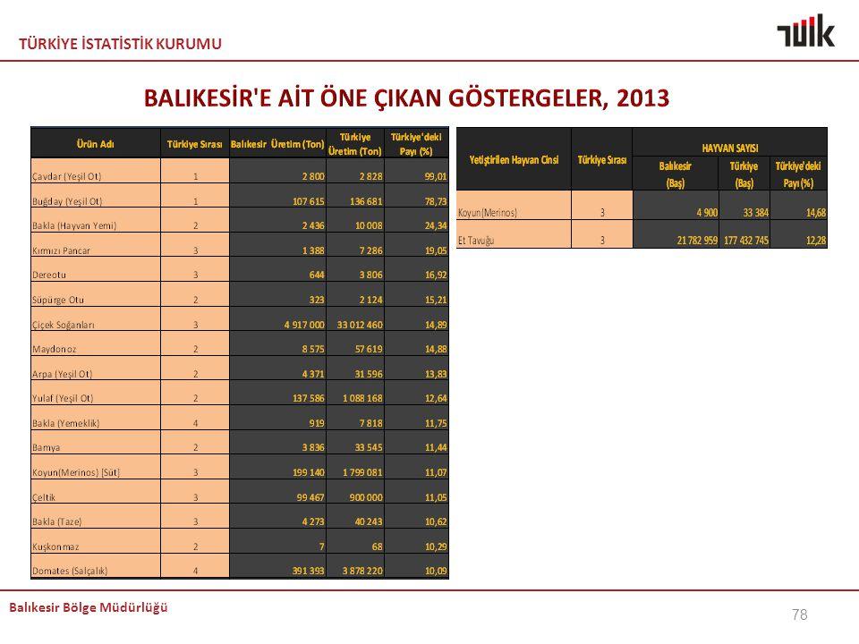 BALIKESİR E AİT ÖNE ÇIKAN GÖSTERGELER, 2013