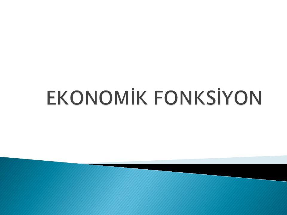 EKONOMİK FONKSİYON