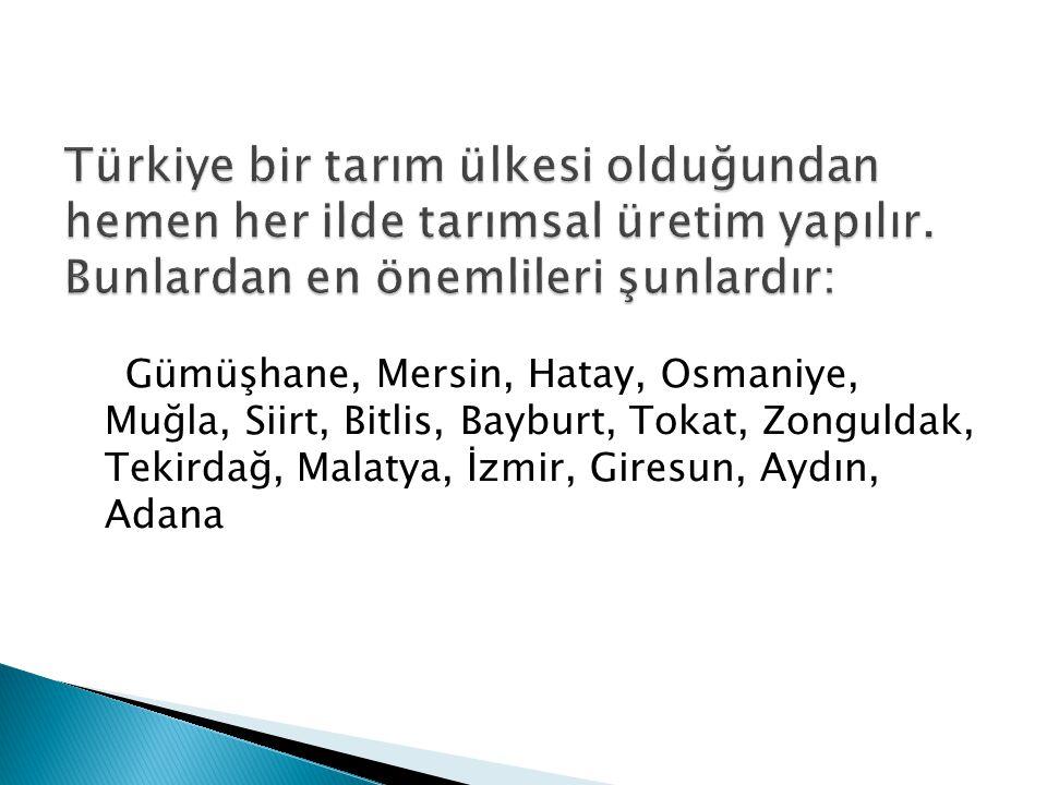 Türkiye bir tarım ülkesi olduğundan hemen her ilde tarımsal üretim yapılır. Bunlardan en önemlileri şunlardır: