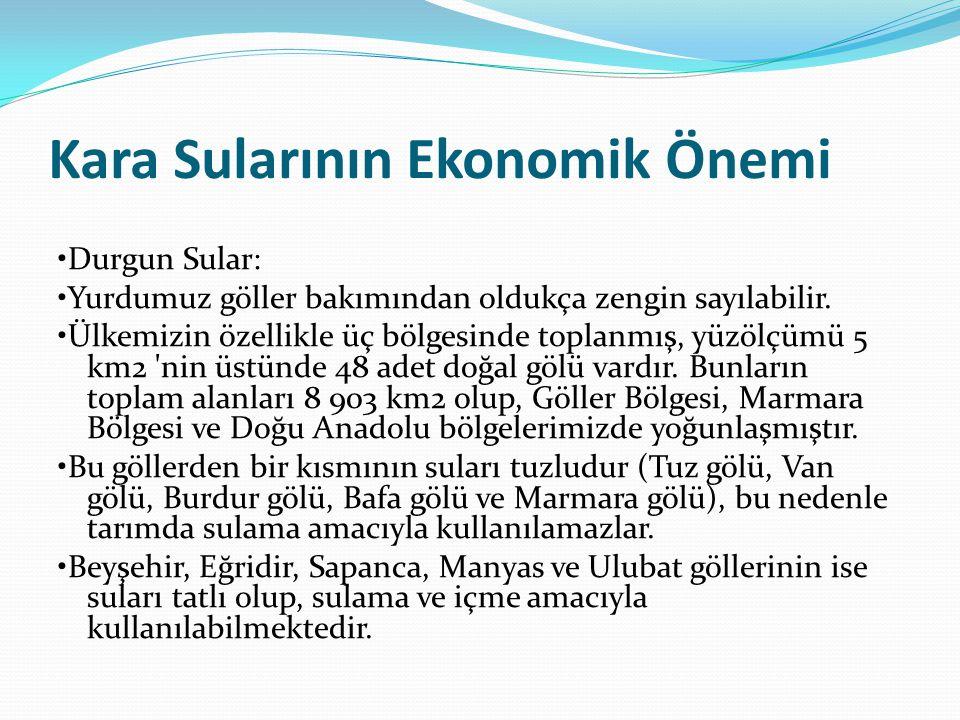 Kara Sularının Ekonomik Önemi