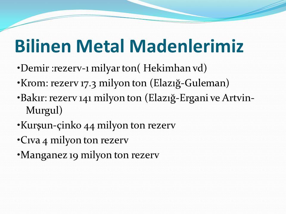 Bilinen Metal Madenlerimiz