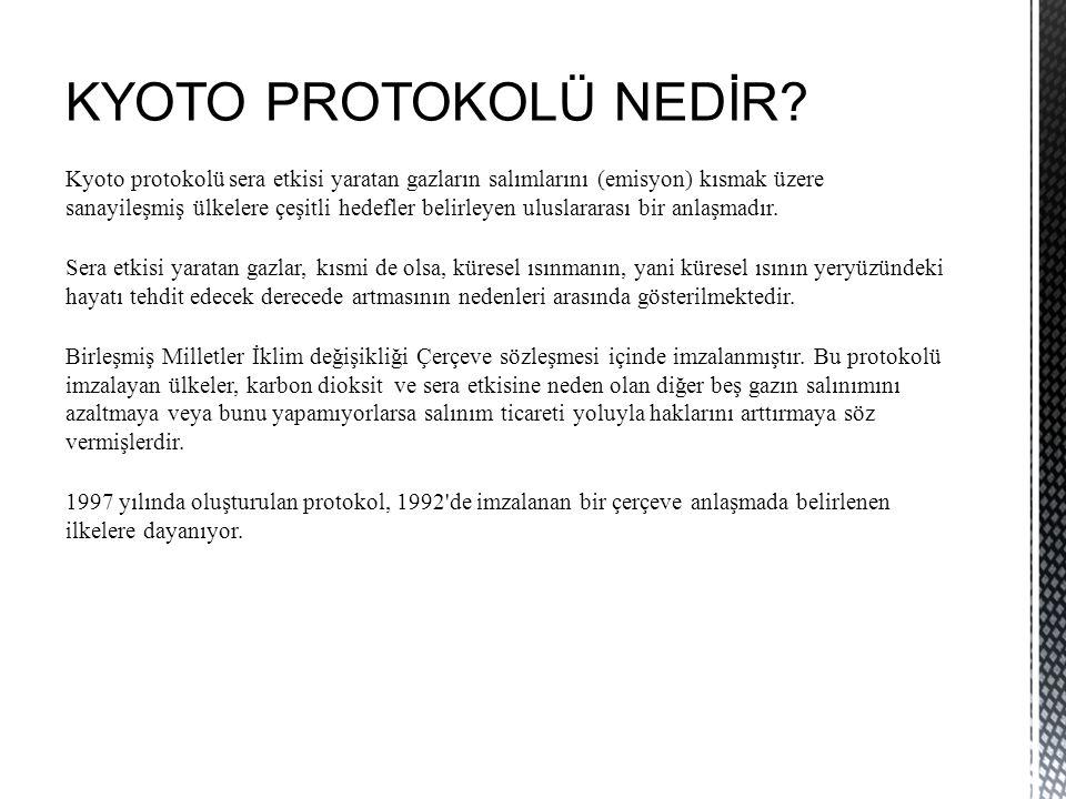 KYOTO PROTOKOLÜ NEDİR