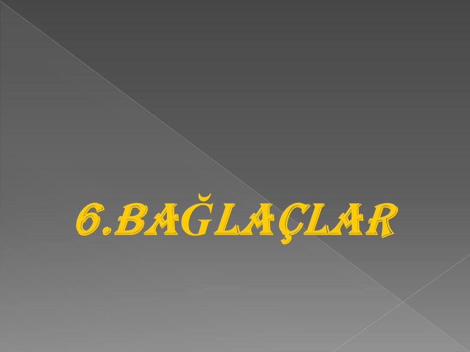 6.BAĞLAÇLAR