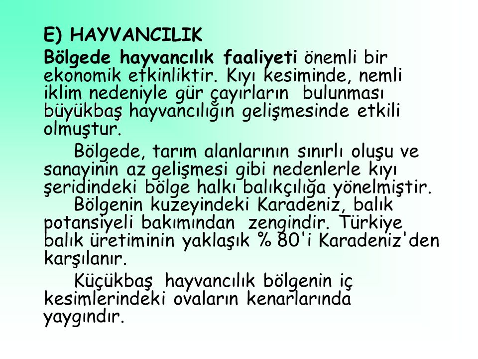 E) HAYVANCILIK