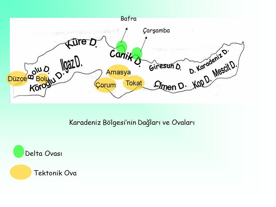 Karadeniz Bölgesi'nin Dağları ve Ovaları
