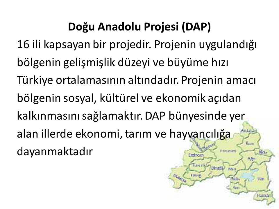 Doğu Anadolu Projesi (DAP) 16 ili kapsayan bir projedir