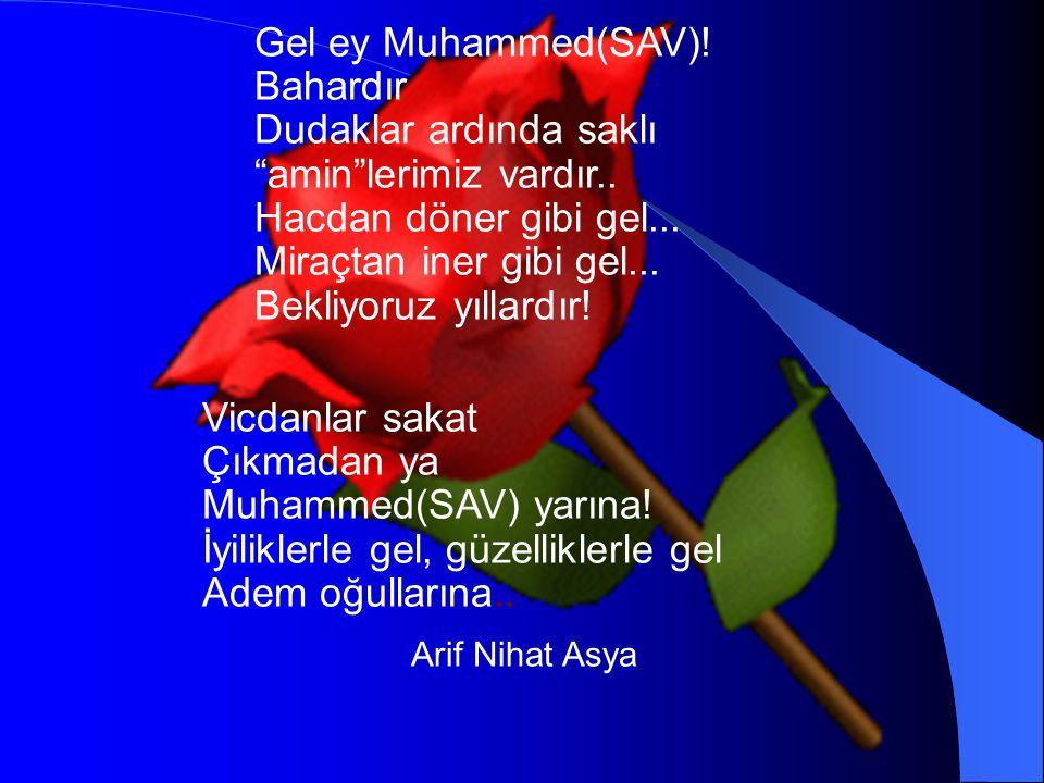 Gel ey Muhammed(SAV)! Bahardır Dudaklar ardında saklı amin lerimiz vardır.. Hacdan döner gibi gel... Miraçtan iner gibi gel... Bekliyoruz yıllardır!