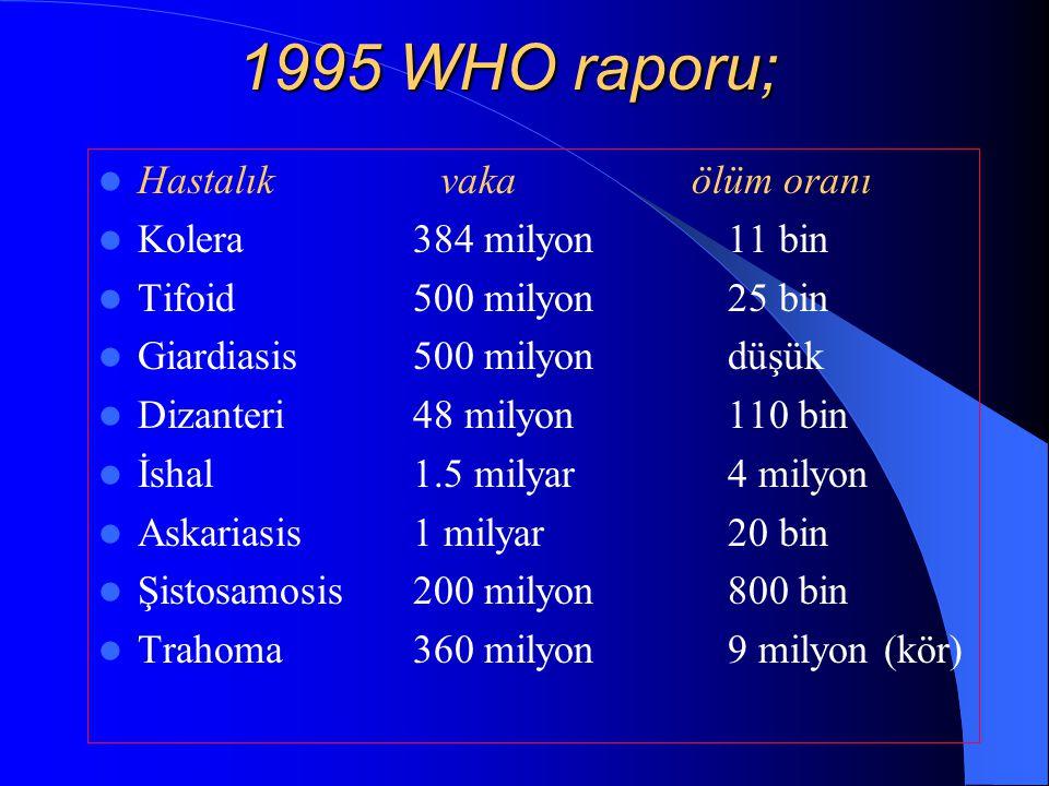 1995 WHO raporu; Hastalık vaka ölüm oranı Kolera 384 milyon 11 bin