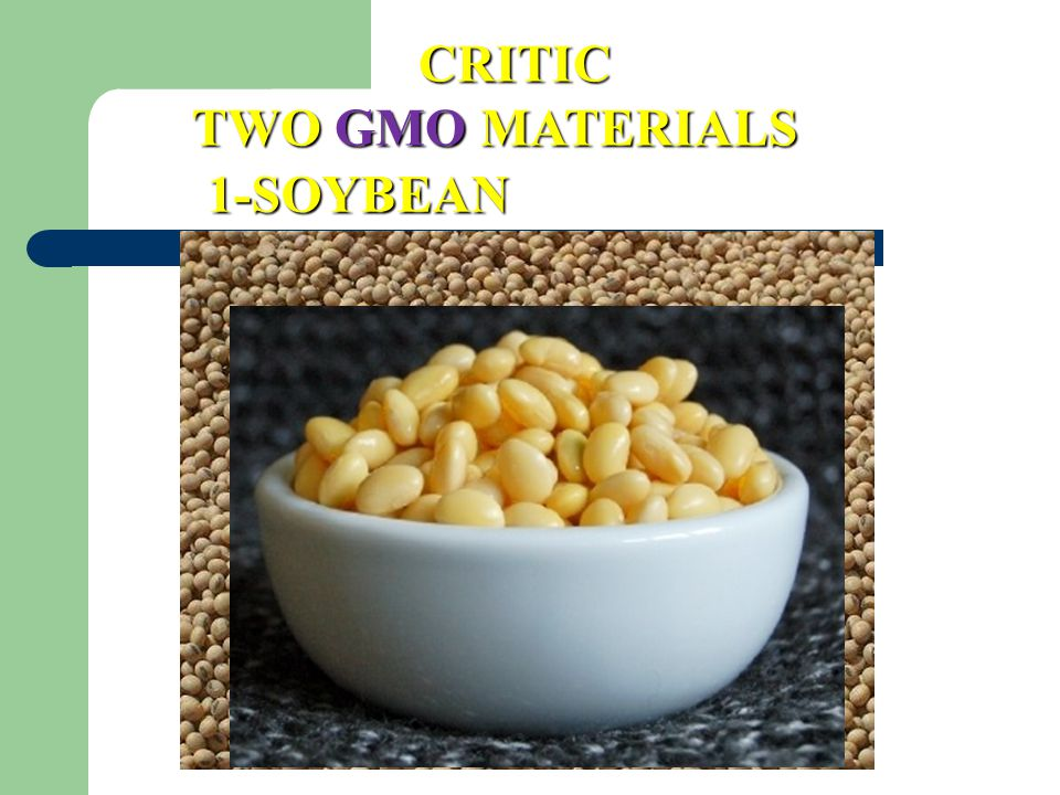 CRITIC TWO GMO MATERIALS 1-SOYBEAN 55
