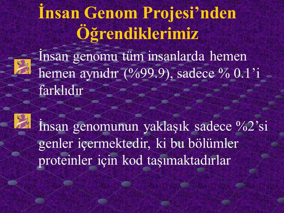 İnsan Genom Projesi'nden Öğrendiklerimiz