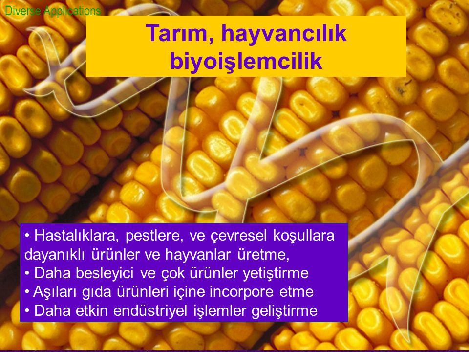 Tarım, hayvancılık biyoişlemcilik