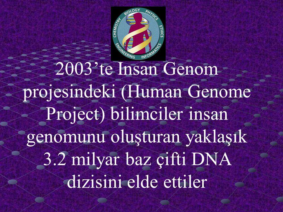 2003'te İnsan Genom projesindeki (Human Genome Project) bilimciler insan genomunu oluşturan yaklaşık 3.2 milyar baz çifti DNA dizisini elde ettiler