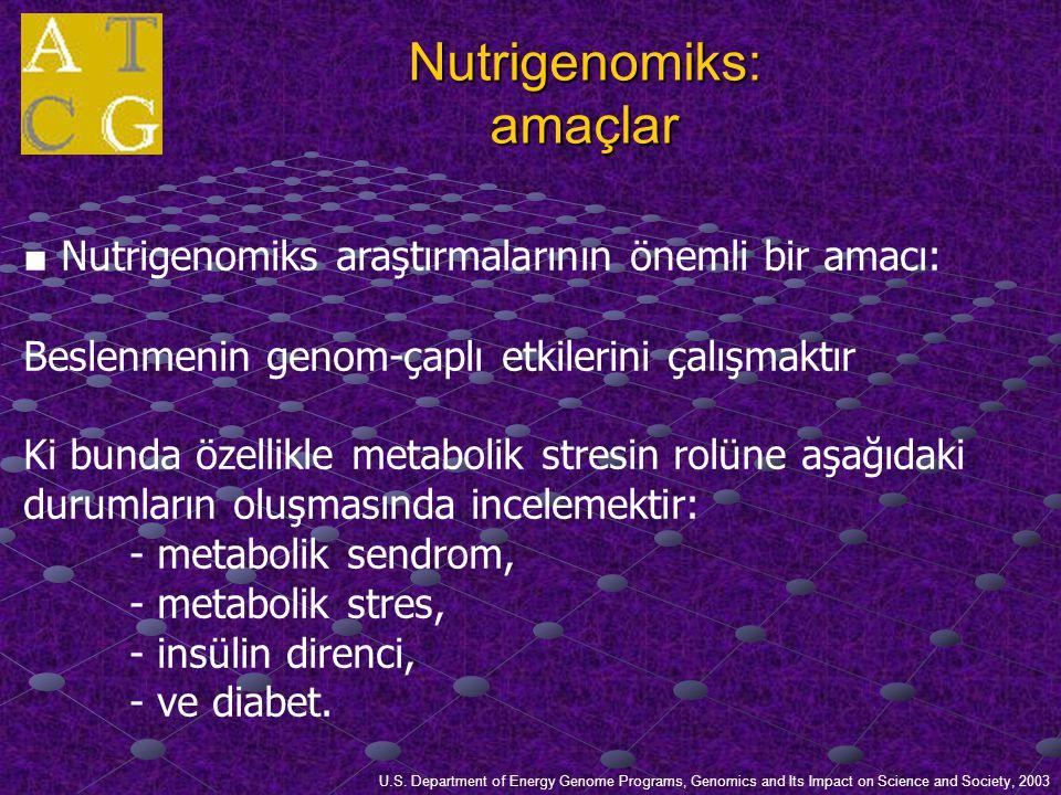 Nutrigenomiks: amaçlar