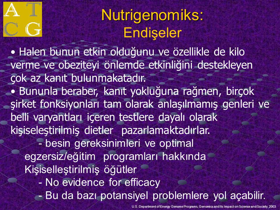 Nutrigenomiks: Endişeler