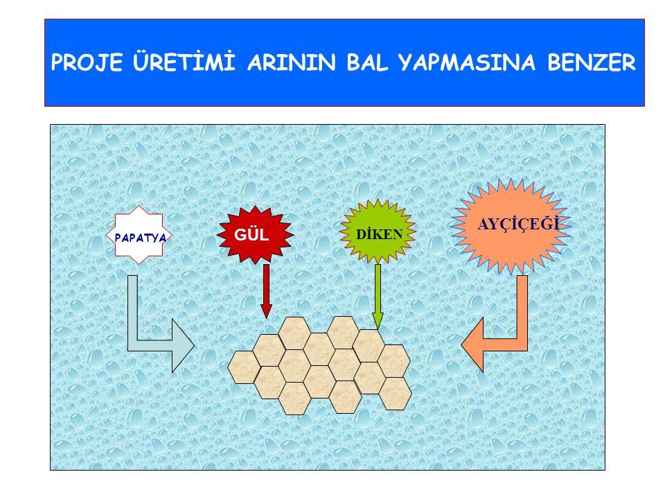 PROJE ÜRETİMİ ARININ BAL YAPMASINA BENZER