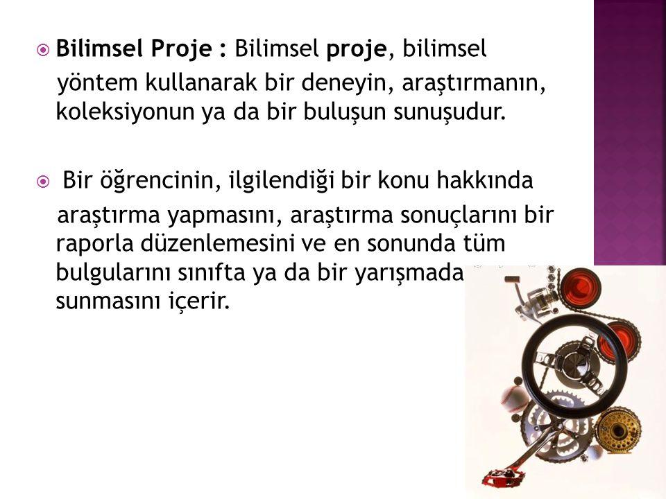 Bilimsel Proje : Bilimsel proje, bilimsel