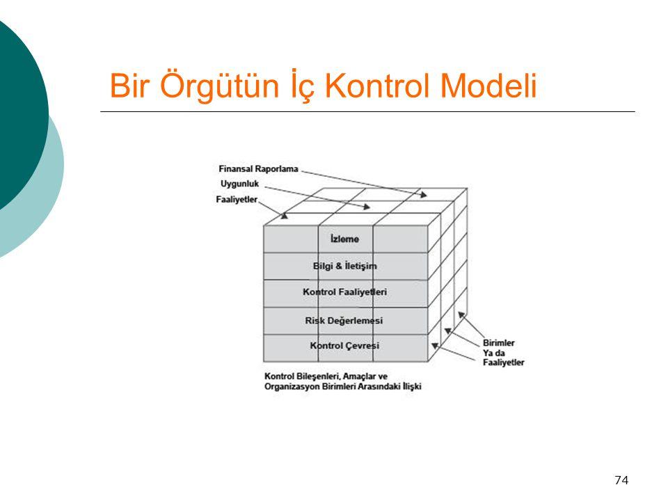 Bir Örgütün İç Kontrol Modeli