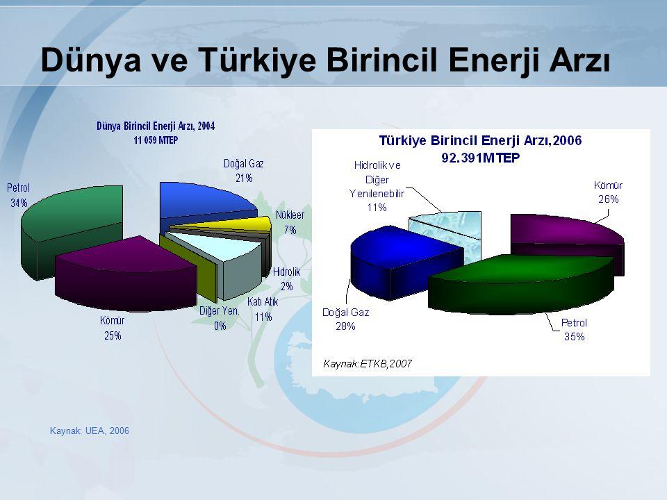 Dünya ve Türkiye Birincil Enerji Arzı