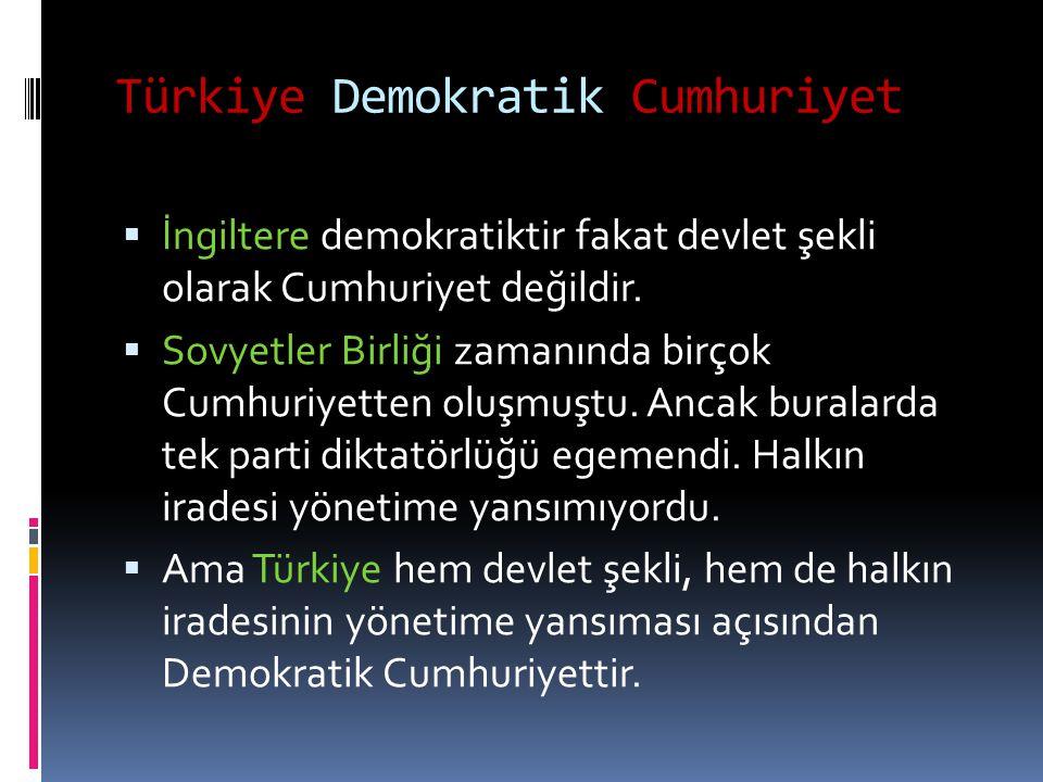 Türkiye Demokratik Cumhuriyet