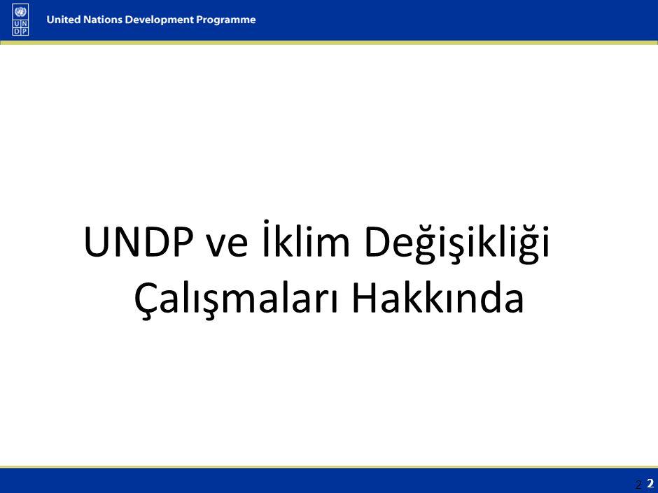 UNDP Hakkında Odak Çalışma Alanları