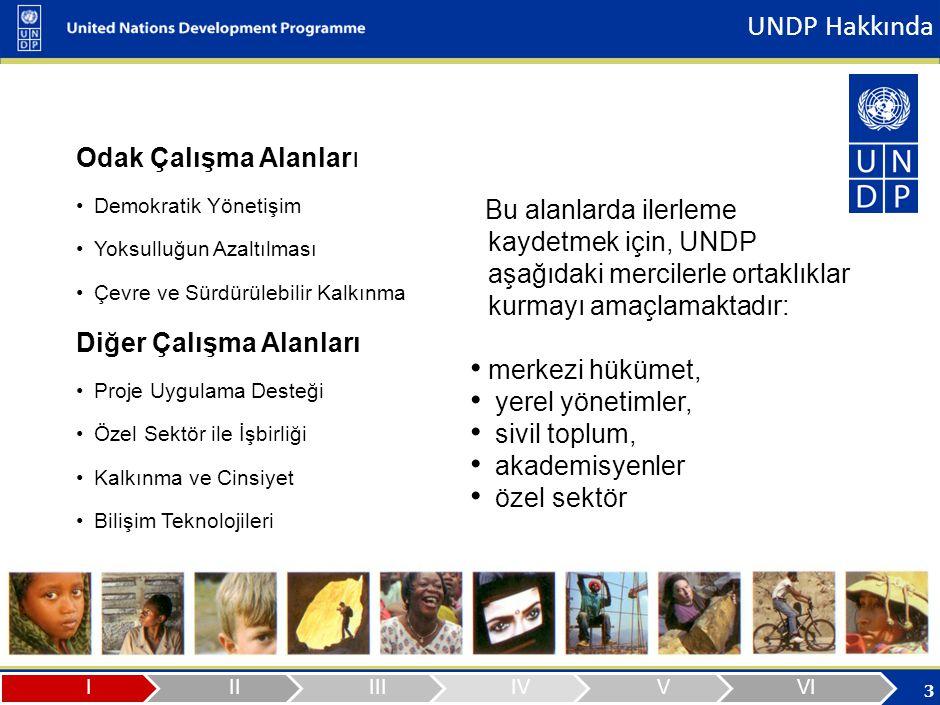 UNDP – Türkiye Çevre ve Sürdürülebilir Kalkınma Programı