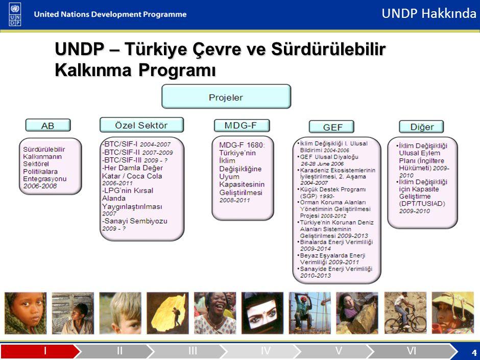 UNDP Hakkında Türkiye Ülke Ofisi Program ve Proje Tablosu (26 Aralık 2008 itibariyle) TEMATİK ALAN.