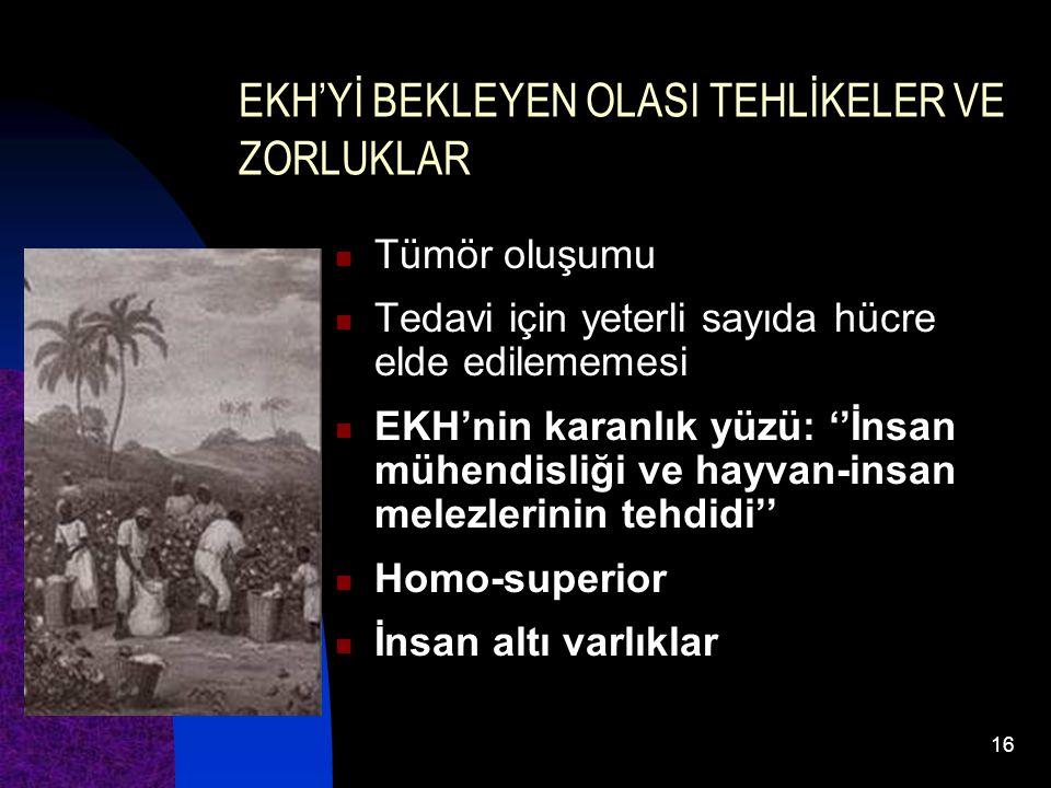EKH'Yİ BEKLEYEN OLASI TEHLİKELER VE ZORLUKLAR