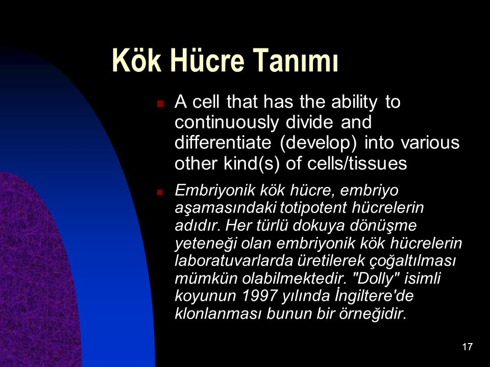 Kök Hücre Tanımı A cell that has the ability to continuously divide and differentiate (develop) into various other kind(s) of cells/tissues.