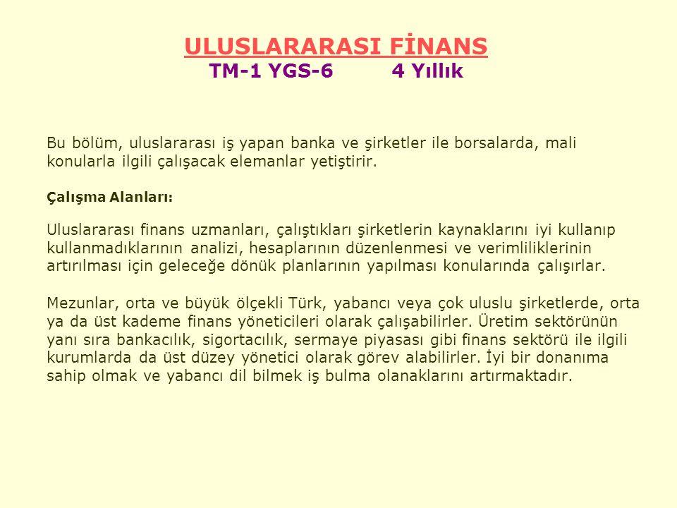 ULUSLARARASI FİNANS TM-1 YGS-6 4 Yıllık