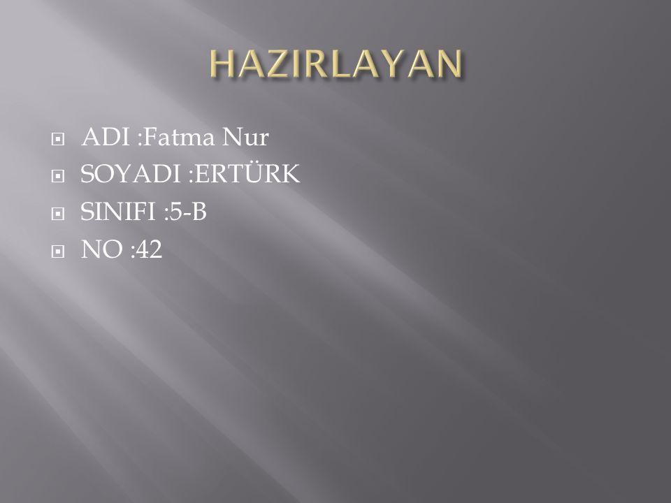 HAZIRLAYAN ADI :Fatma Nur SOYADI :ERTÜRK SINIFI :5-B NO :42
