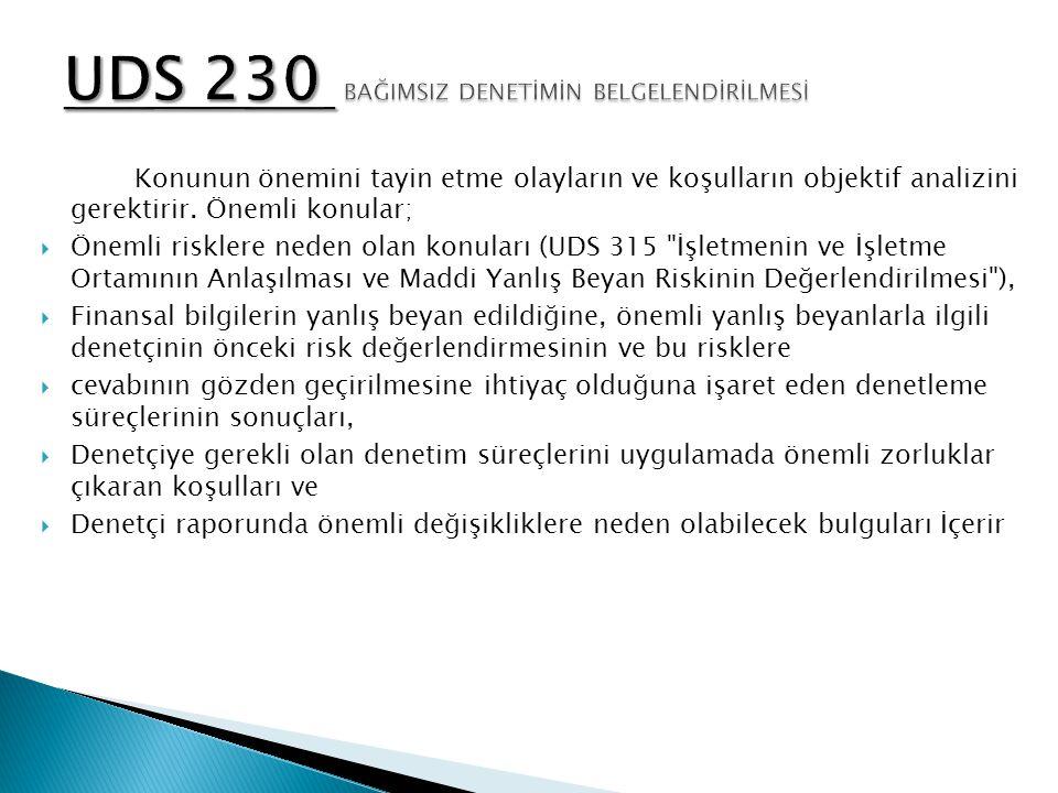 UDS 230 BAĞIMSIZ DENETİMİN BELGELENDİRİLMESİ