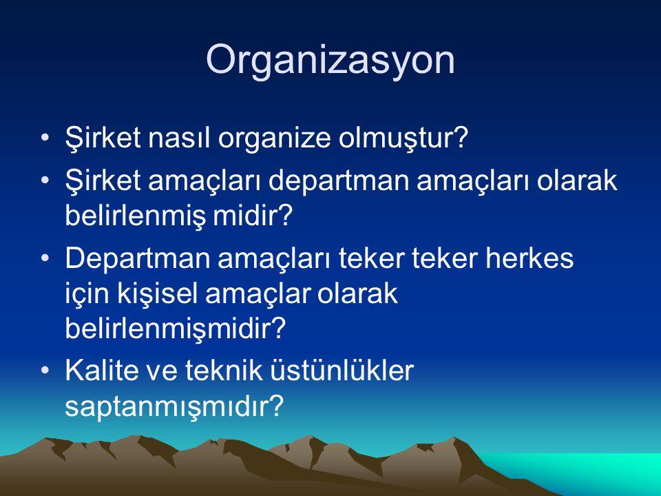 Organizasyon Şirket nasıl organize olmuştur